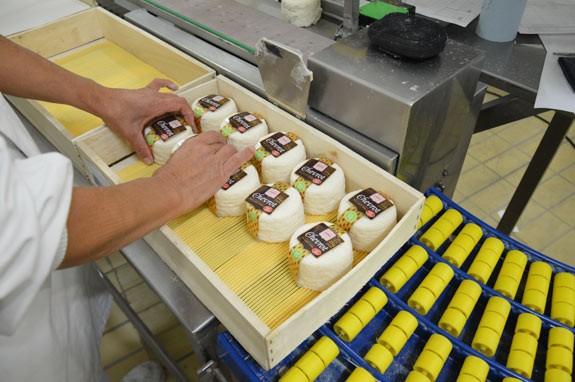 Conditionnement Sèvre & Belle - Fromage moulés louche - Fromages au lait cru