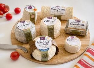 Des fromages crus moulés manuellement à la louche